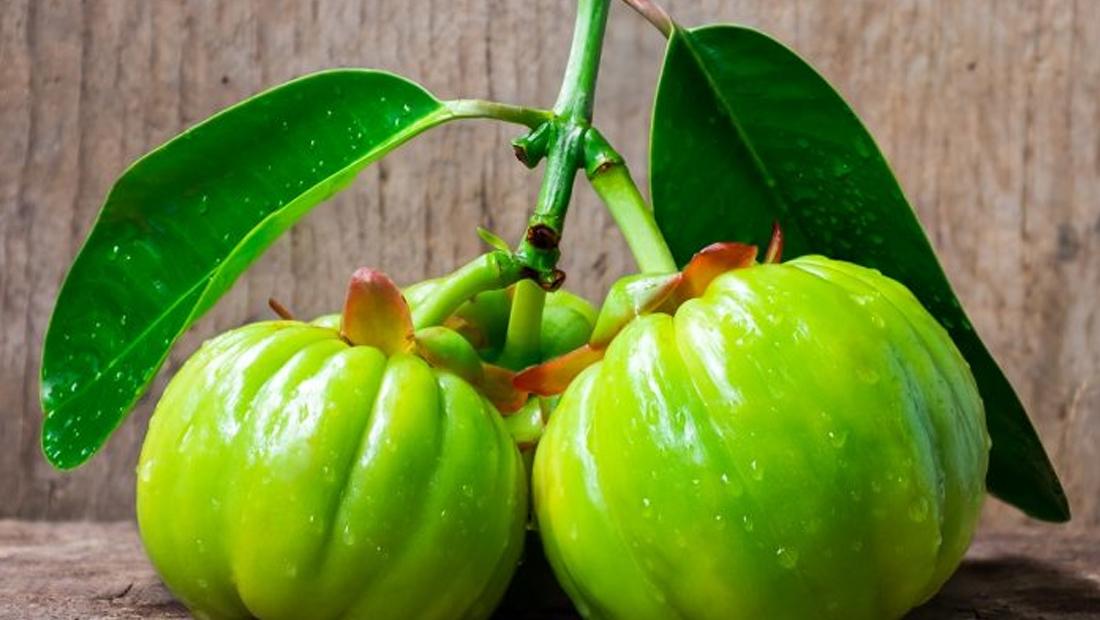 7 Amazing Garcinia Cambogia Benefits Weight Loss Stress Relief